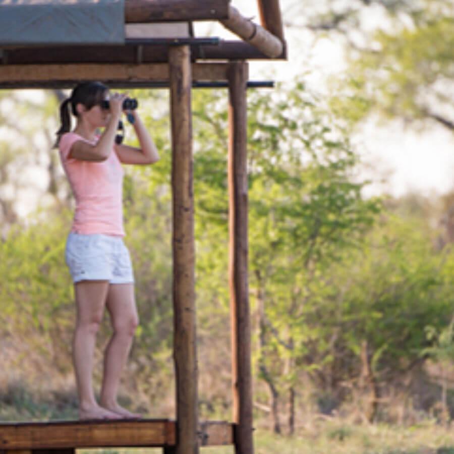 rhulani-safaris-5-day-kruger-big-cat-photo-safari-4