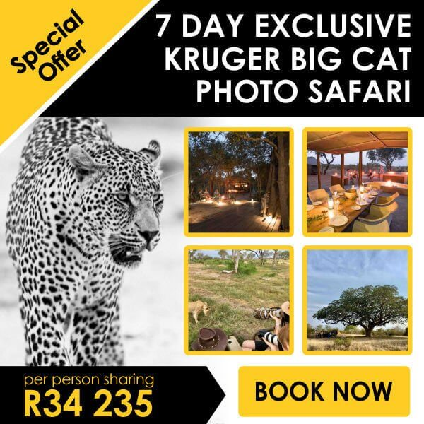 Rhulani Safaris Special
